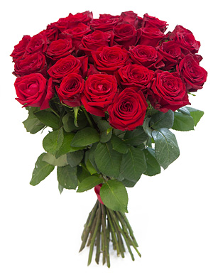 букет роз красных фото